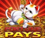 Fortune Pays